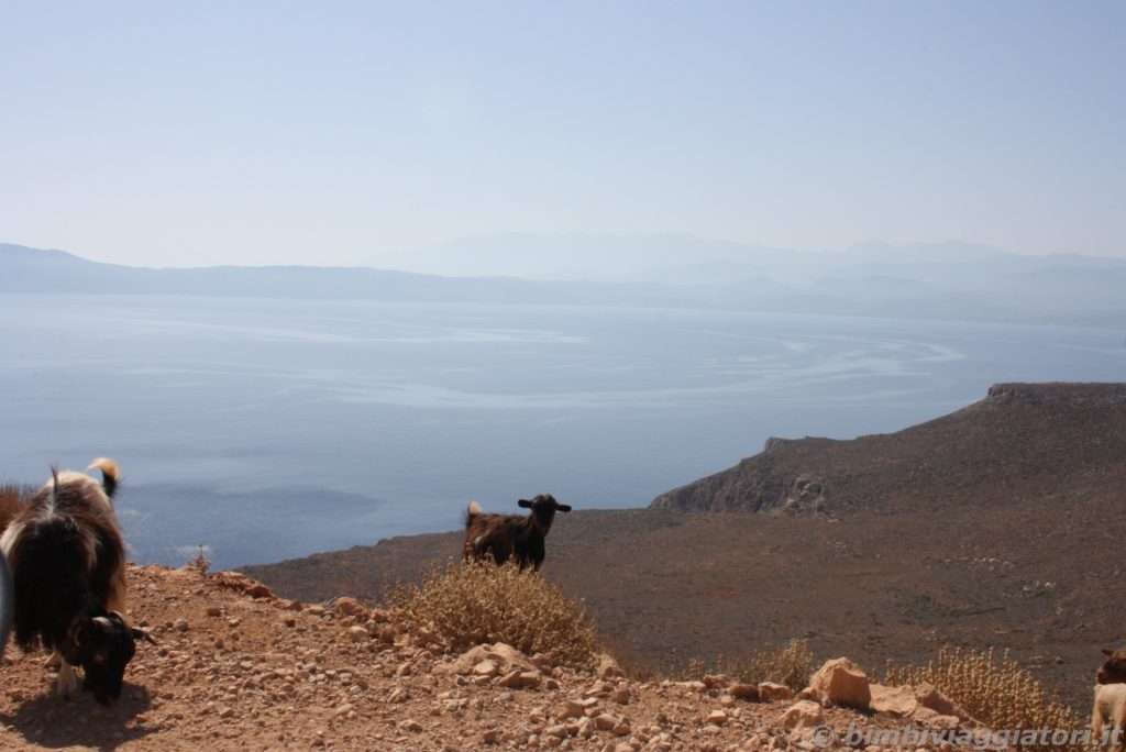 Caprette Creta