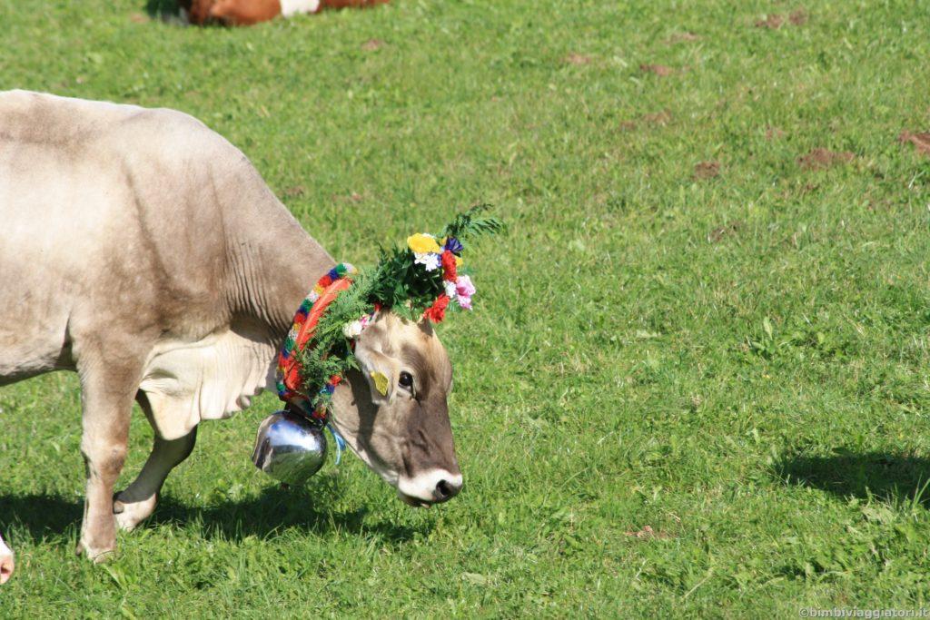 Mucca con fiori