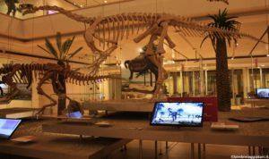 Dinosauri Muse