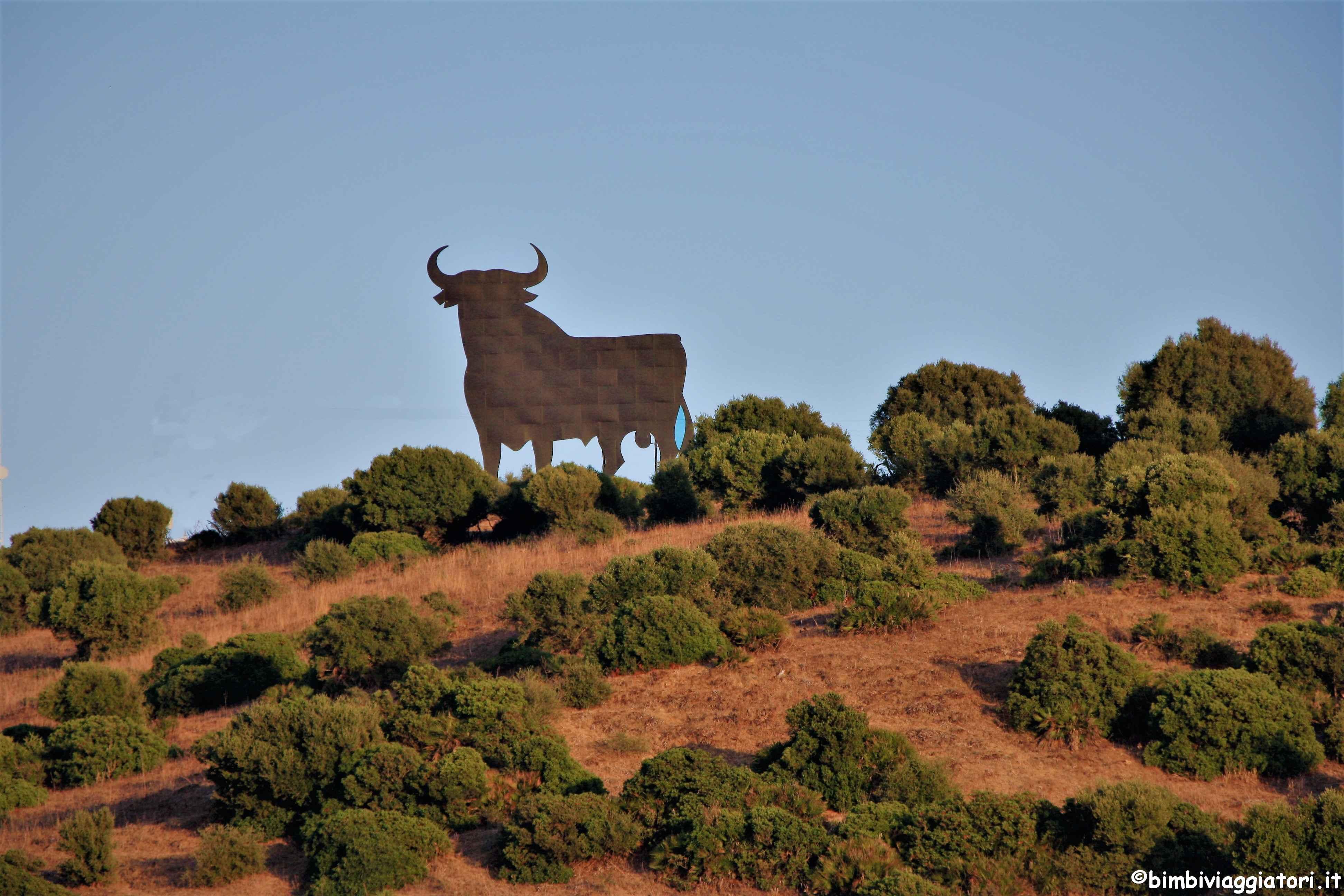 Toro Spagna