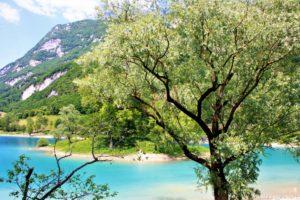 Natura sul Lago di Tenno