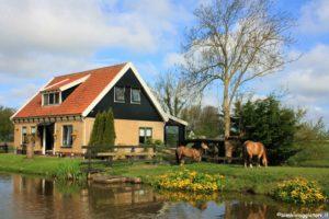 Case in Olanda