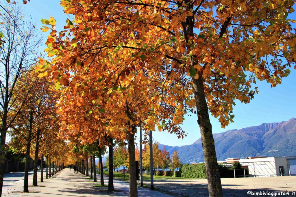 Viale sul Lago Maggiore a Luino