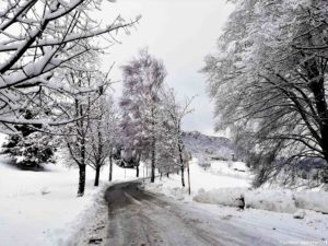 Consigli di guida invernale