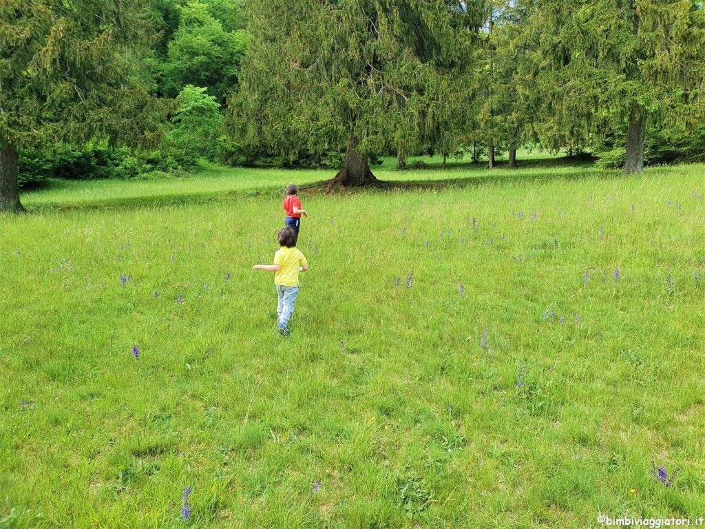 Passeggiate a Molveno con bambini
