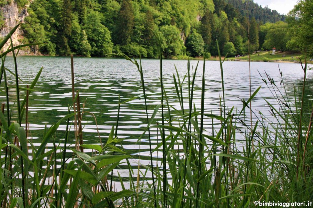 Lago Lamar Trentino