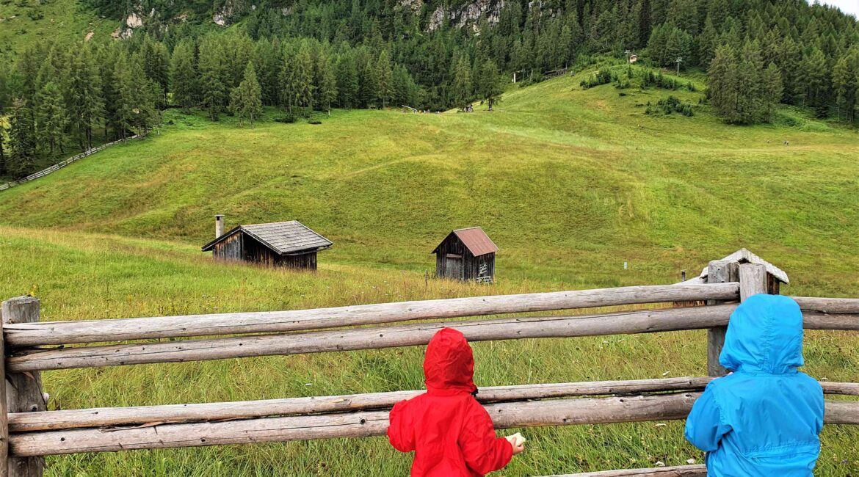 Panorami Croda Rossa con bambini