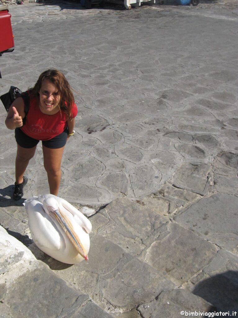 Petros pellicano di Mykonos