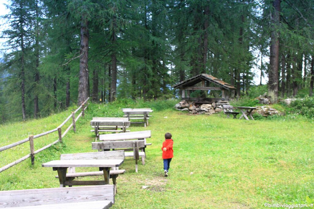 Prati di Croda Rossa in Val Pusteria