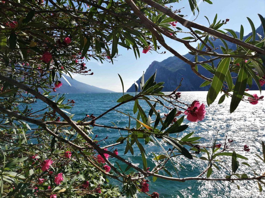 Scorci sul Lago di Garda