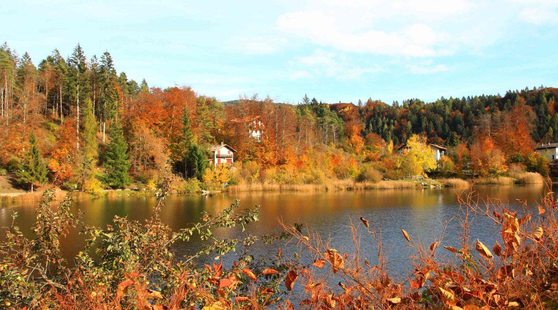Passeggiata in autunno in Trentino