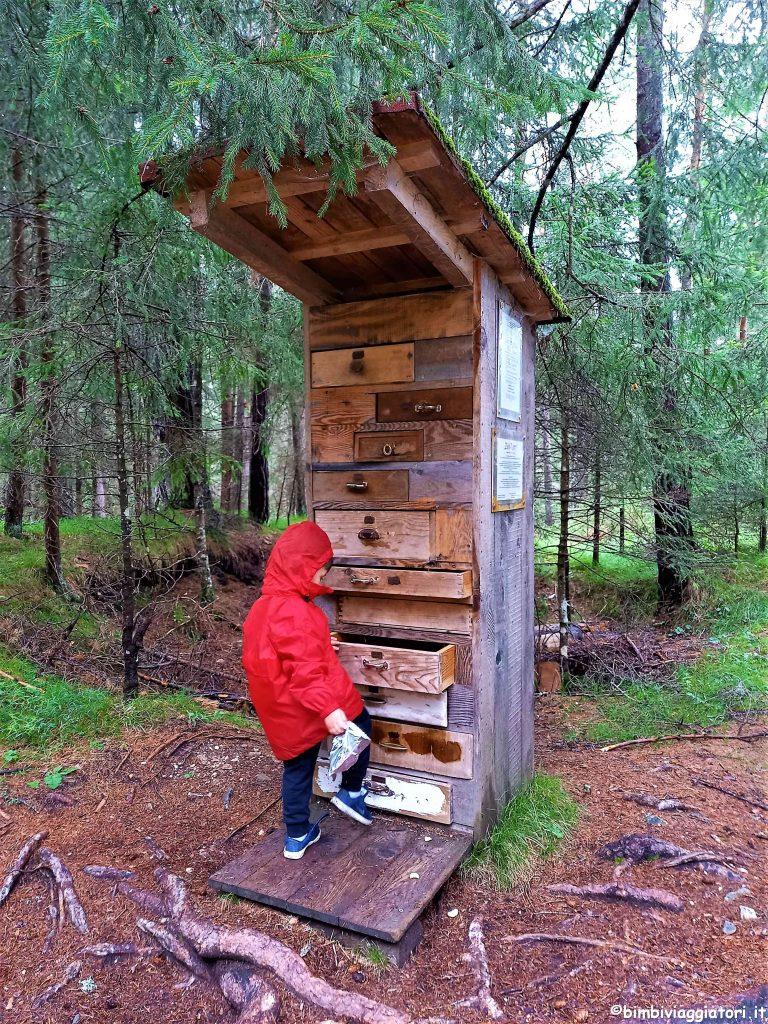 Cosa fare Mondo Magico della Foresta con bambini